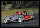 ALMS, Audi R10, 24hr of Le Mans